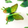 3d-duvar-sticker-Kelebek-Yeşil-3
